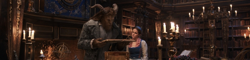 image beauty and the beast library