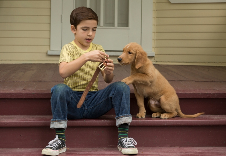 image child dog bryce ghesiar dogs purpose