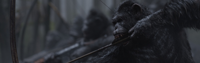 image still photo war planet apes