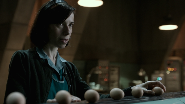 image still sally hawkins shape of water