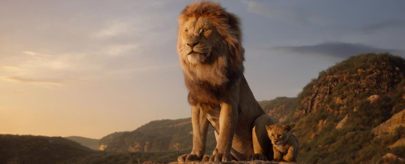 Film still of The Lion King (2019) with two lions on a rocky outcrop looking onto the horizon.